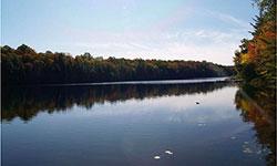 Lorimer Lake